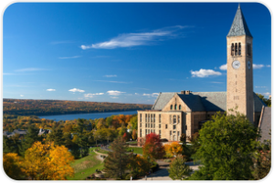 10. Cornell University