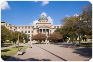 15. Texas A&M University—College Station (Mays)