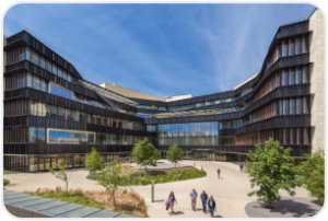 31. University of Texas—Austin (McCombs)